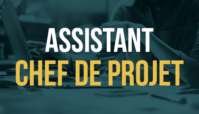 Assistant chef de projet  (H/F) (Stage/Alternance)